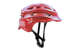 Scarlet Hummingbird Headgear